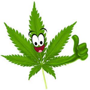 voordelen cannabis